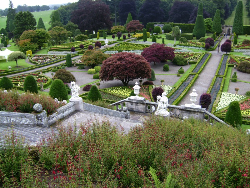 Drummond Garden