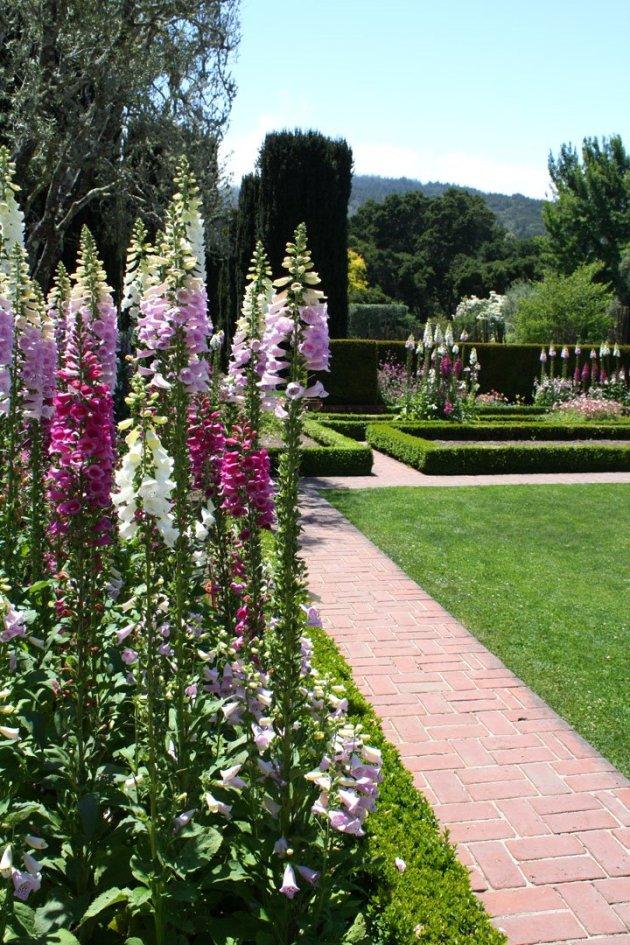 Fioli Garden