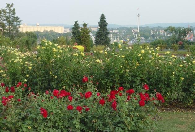 Hershey Garden