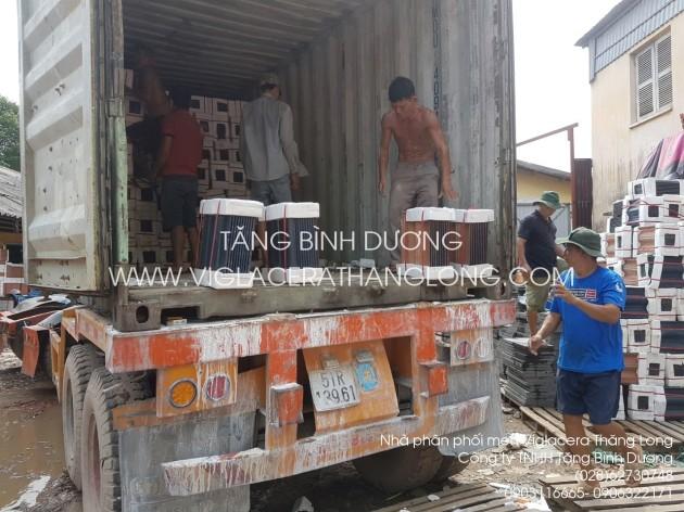 Ngói viglacera Thăng Long xuống hàng container tại kho Tăng Bình Dương